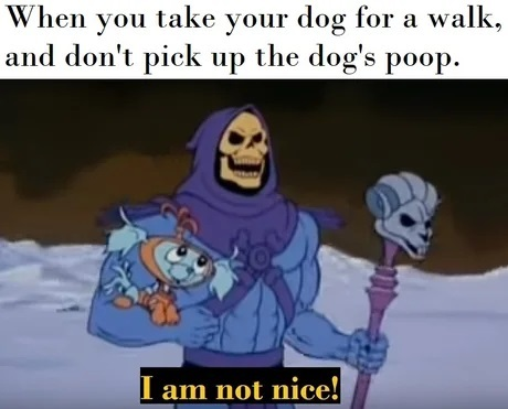 Inconsiderate Skeletor - meme