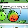Tomato tamoto