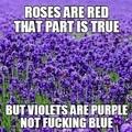 fuck valentinesday
