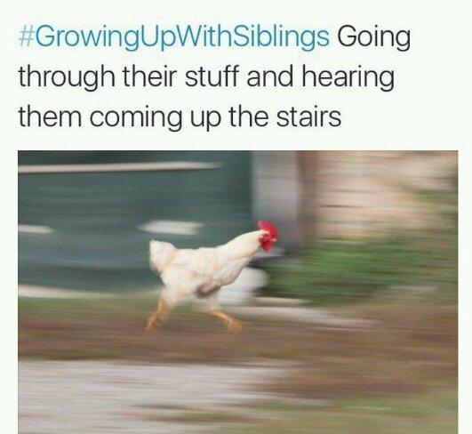 Running cock - meme
