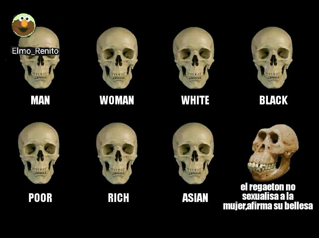 Puto el que lea - meme