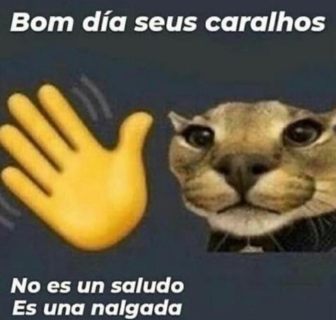 >:D - meme