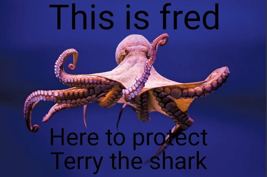 Terry protecter - meme