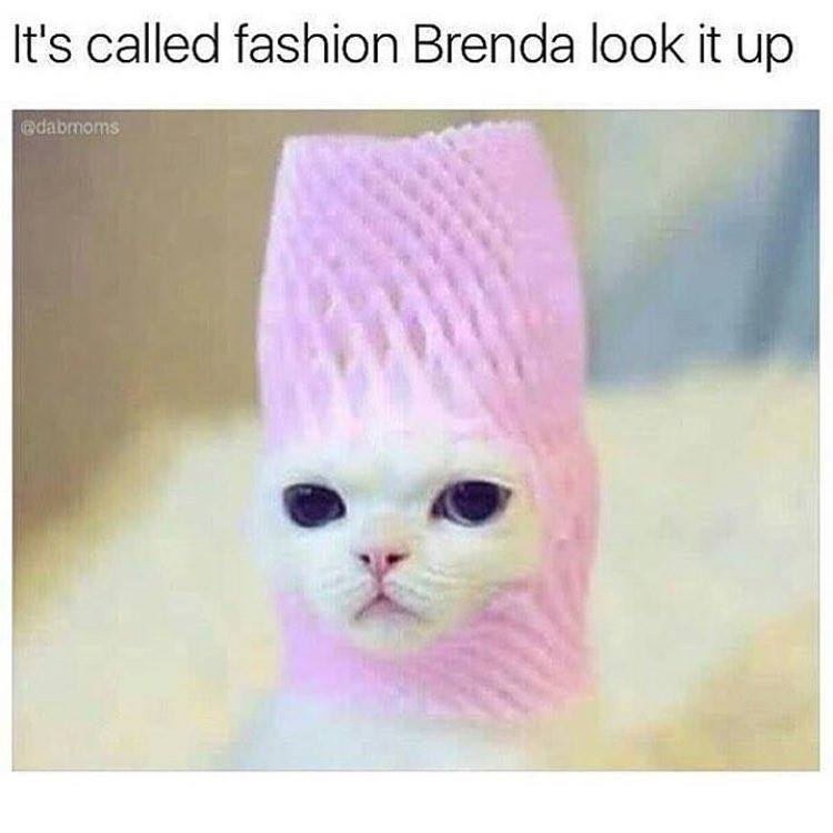 Title is filled with fashion - meme