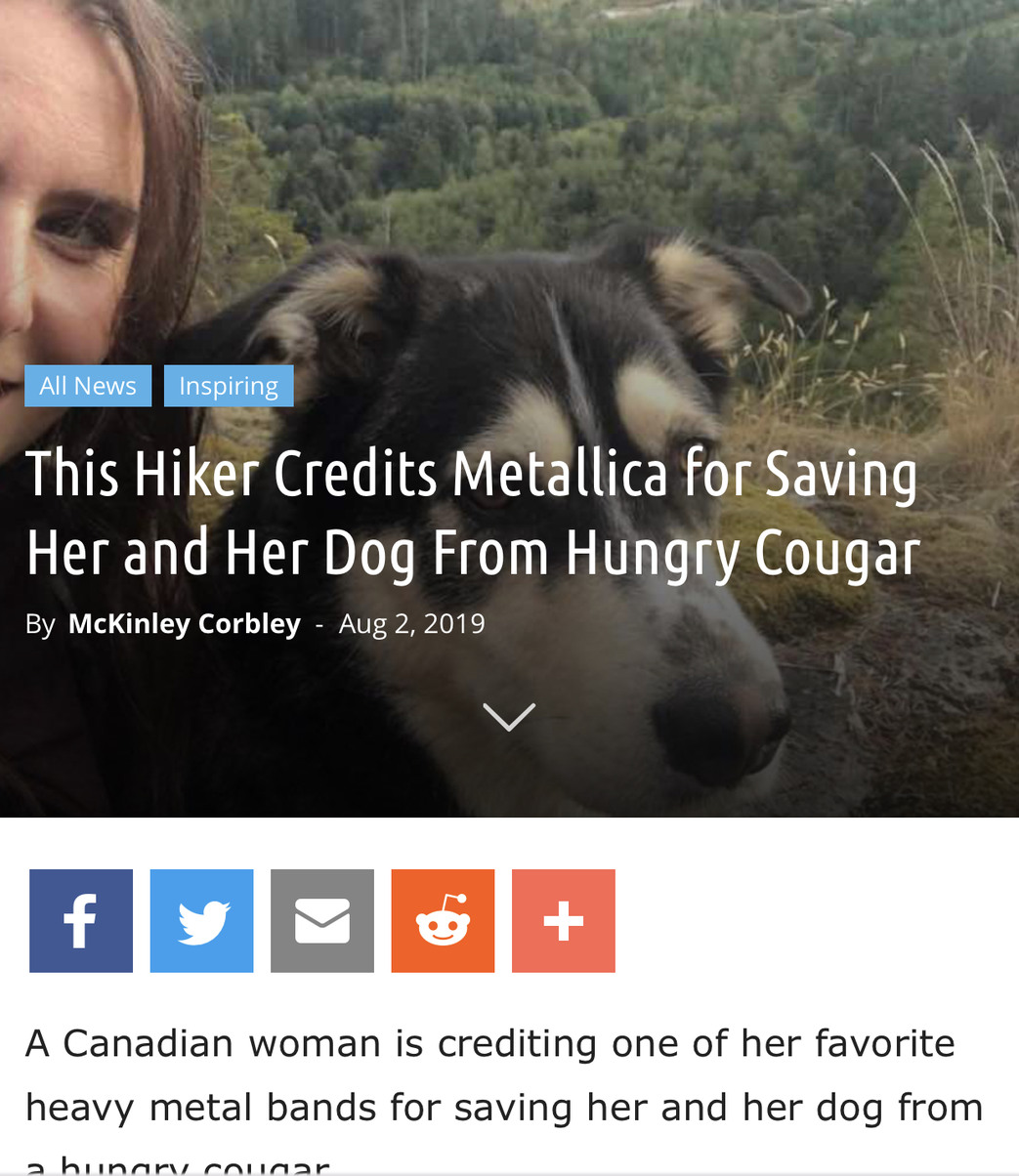 Wholesome News Story #6 - meme