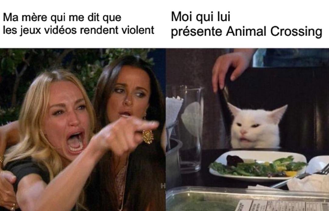 はたらたらたはやまゆた bonjour - meme