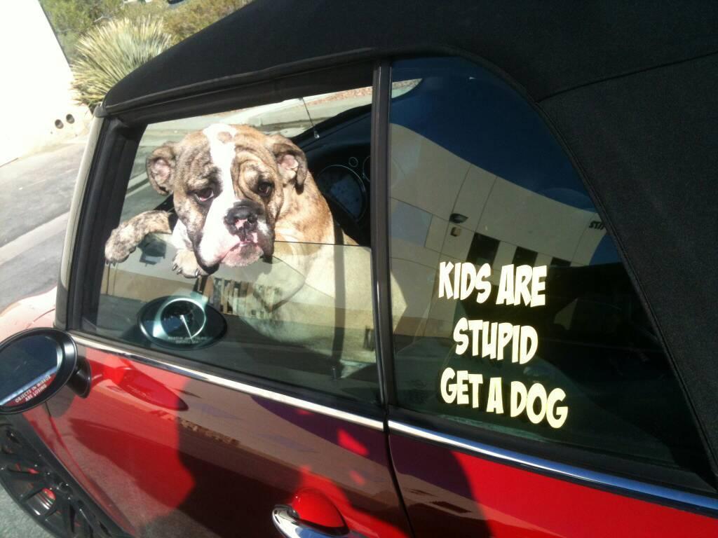 I love puppies - meme