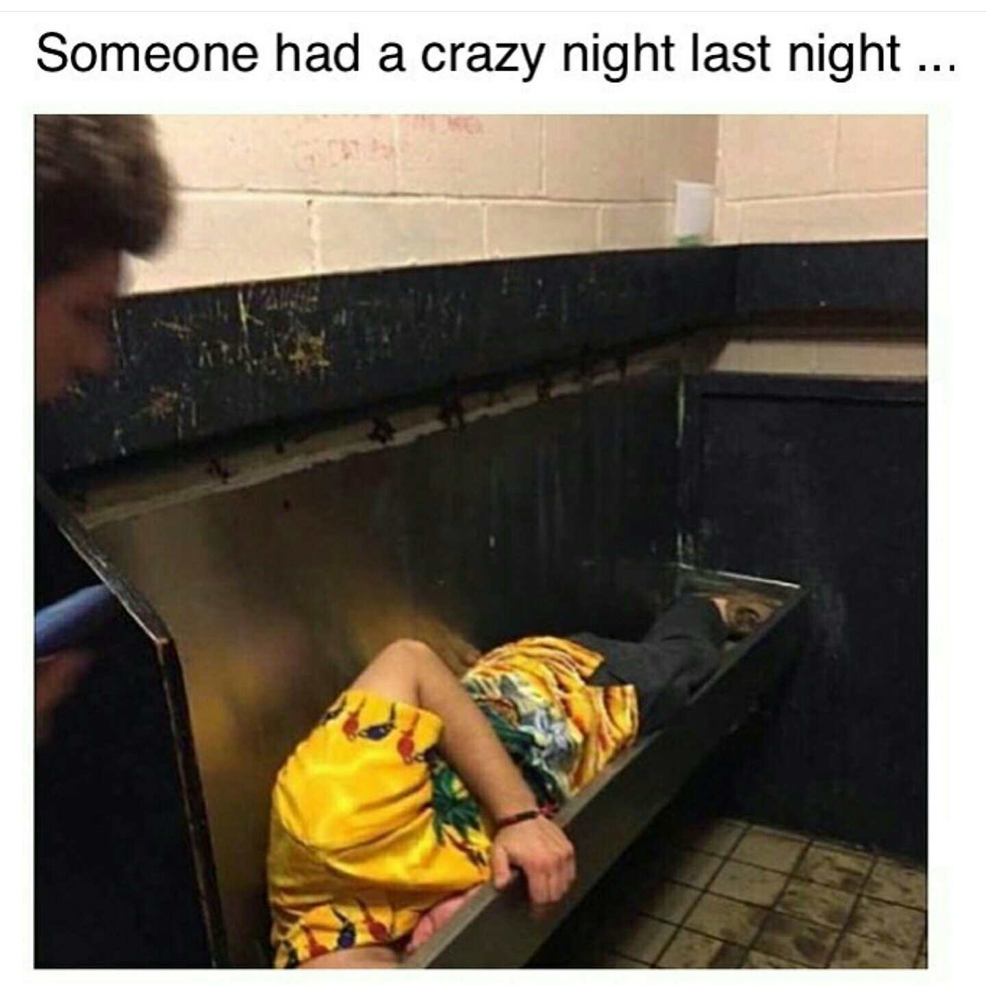 When you're so drunk and anywhere will do - meme
