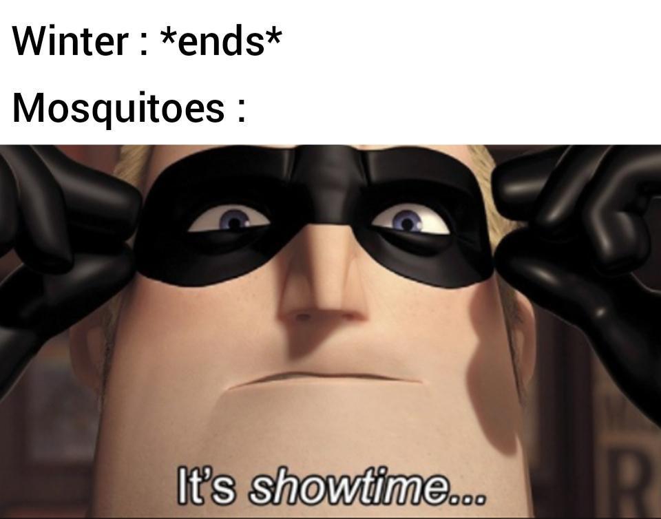 I hate mosquitoes - meme