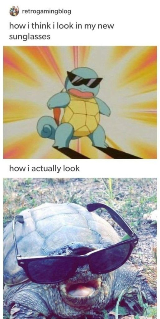 serveur pokemon : https://discord.gg/RJMqg2jMav - meme