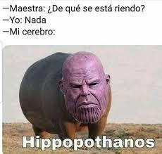 H I P P O P O T H A N O S - meme