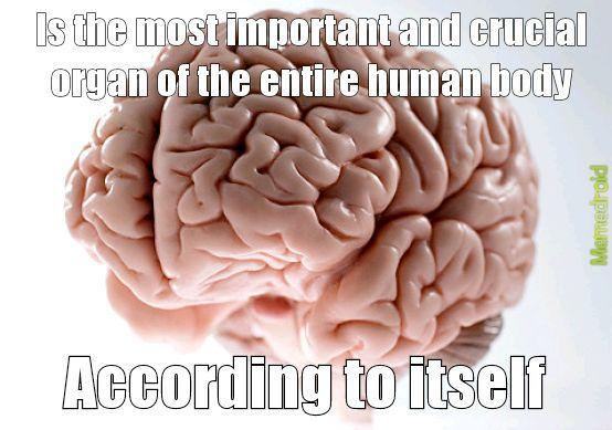 No wonder humans are selfish - meme