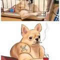 Bar dog