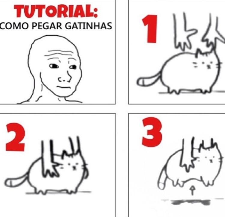 O título foi pegar umas gatinhas... - meme