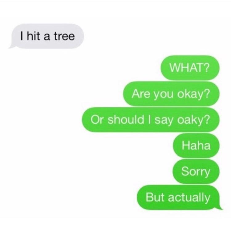 oaky tree - meme