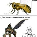 abejas...