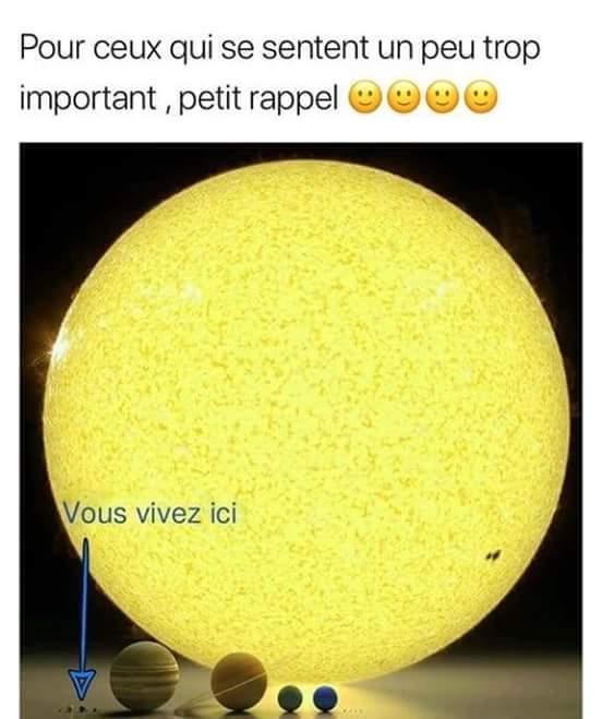 Voila - meme