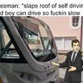 Tem selfdriving buses