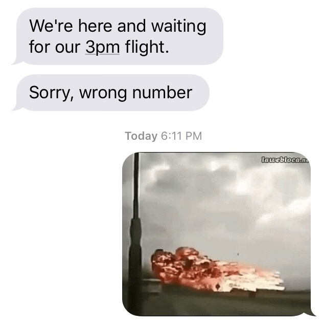 I sent them a gif of a plane crash XD - meme