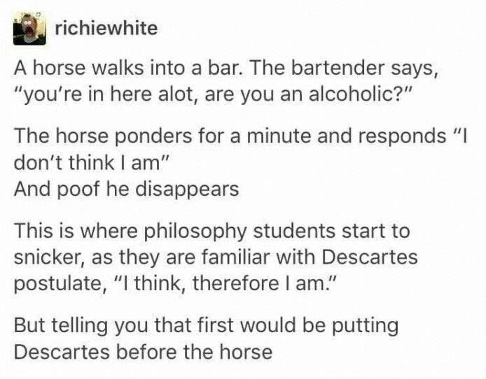 Rene Descartes was a drunken fart / I drink, therefore I am - meme