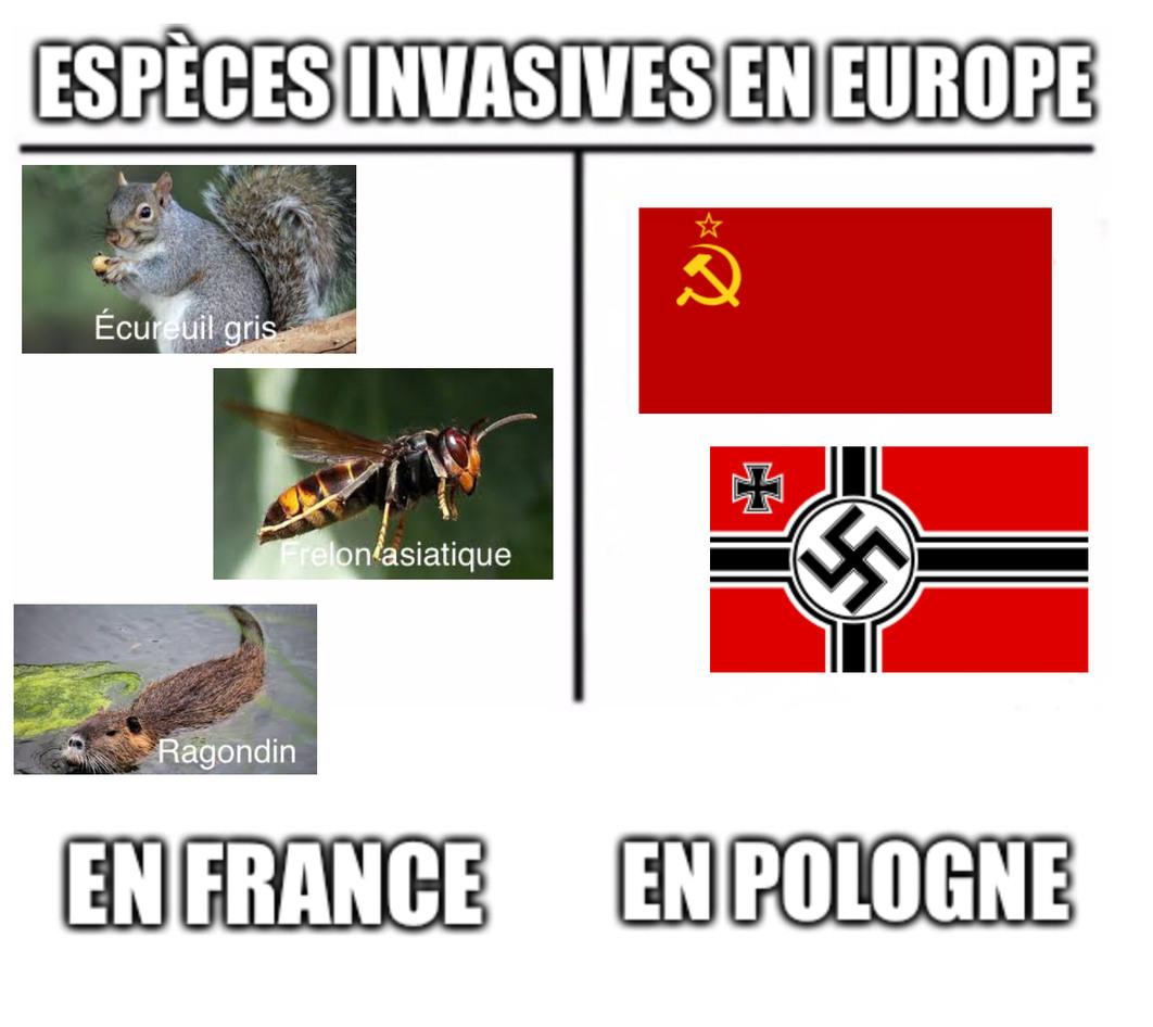 Espèces invasives - meme