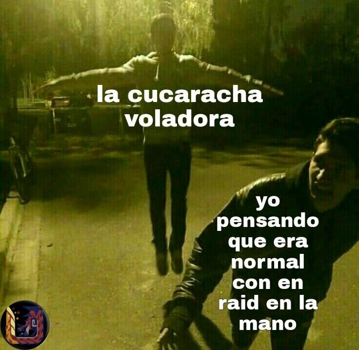 Volo - meme