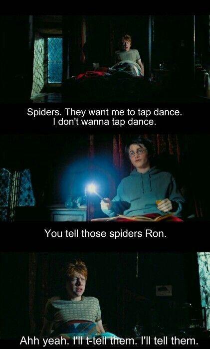 Spiders! - meme