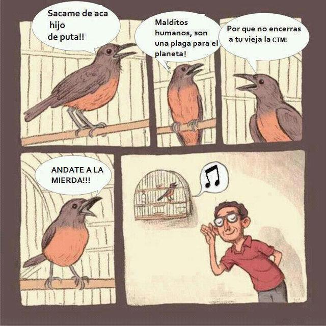 Traducciones - meme