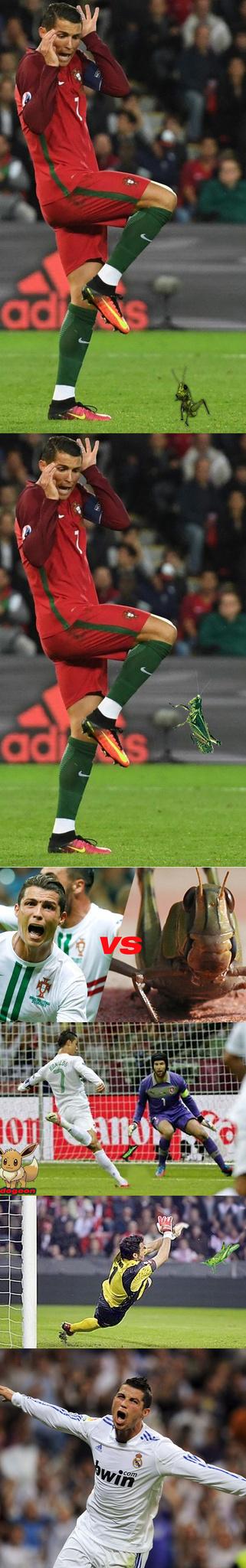 Cito la cavalletta che vidi ieri che mi diede quest'idea (dopo essermi spaventato come Ronaldo) - meme