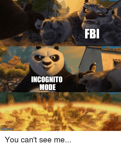 Incognito is the best - meme