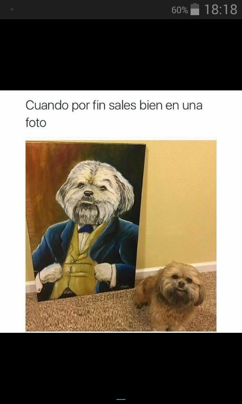 Fotos - meme