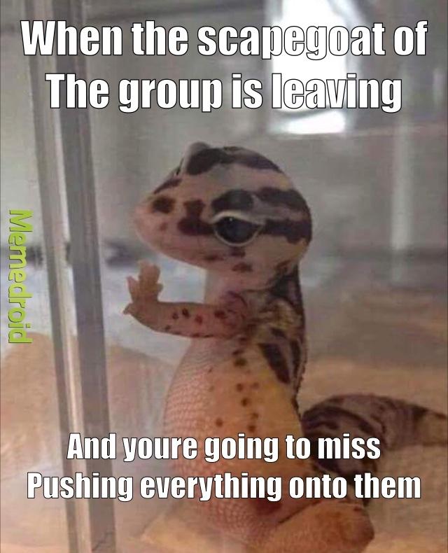 571c78ddb5188 sad gecko meme by latias and latios ) memedroid