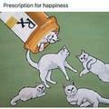 Meow meows