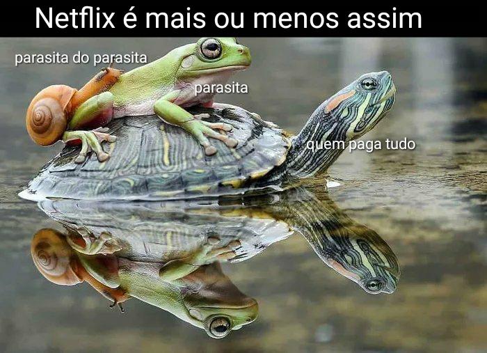Netflix explicada - meme