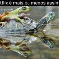 Netflix explicada