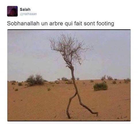 PWHAHAHAH - meme
