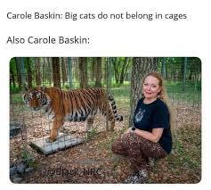 Carole Baskin - meme