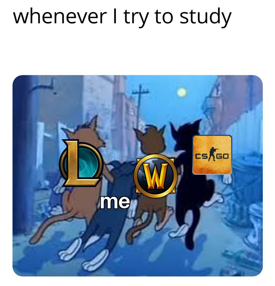 Whenever I try to study - meme