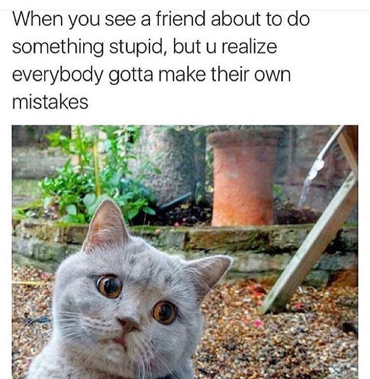 Gotta learn somehow - meme