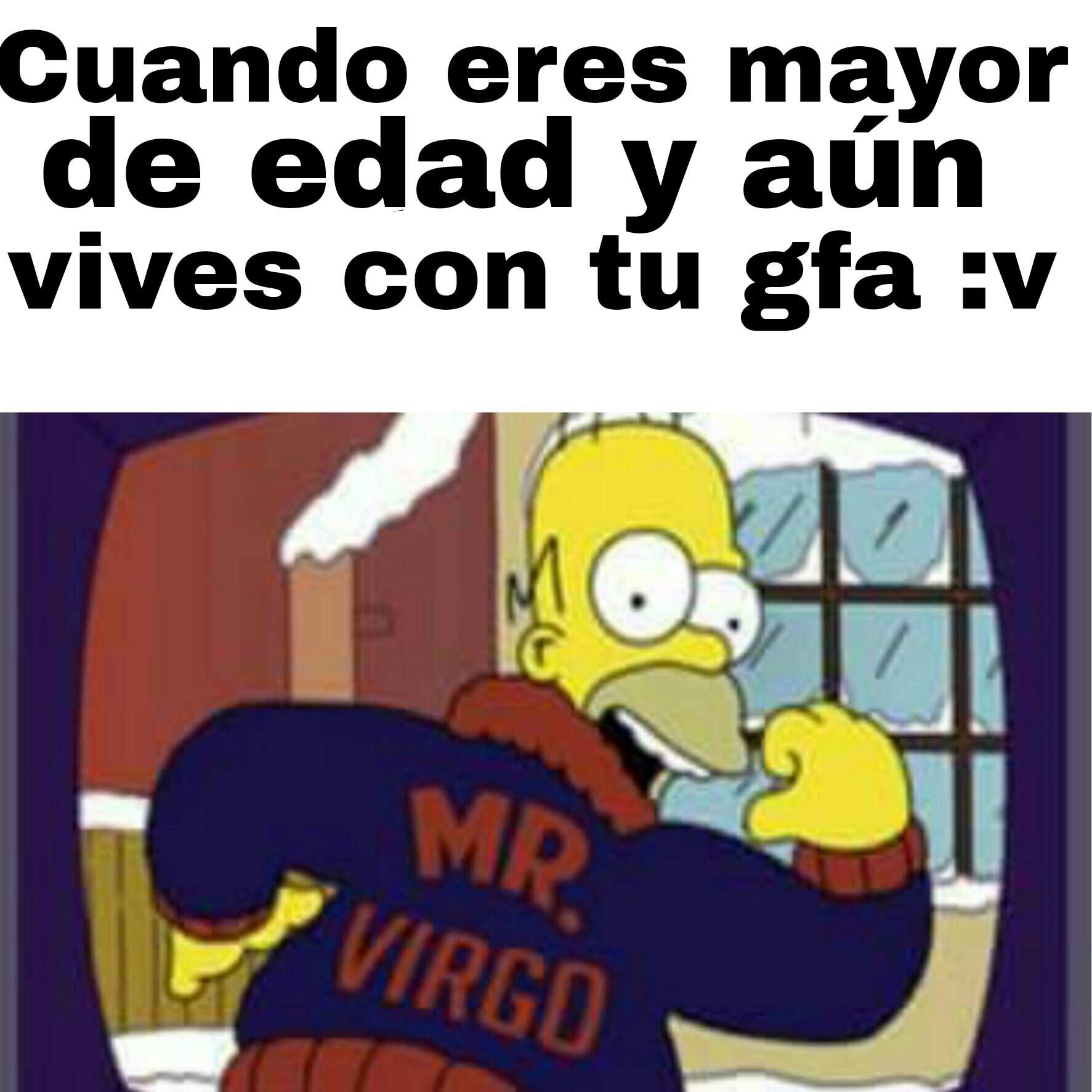 Mr.Virgo v: - meme