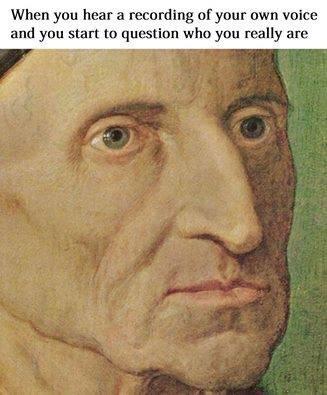 HateMyVoice - meme