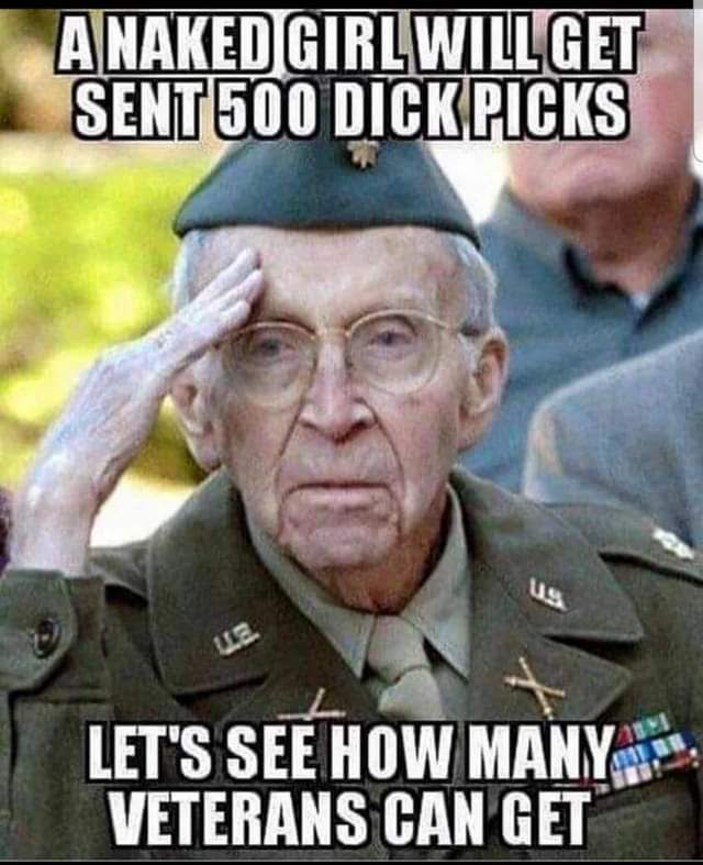 Dicks out For our vets - meme