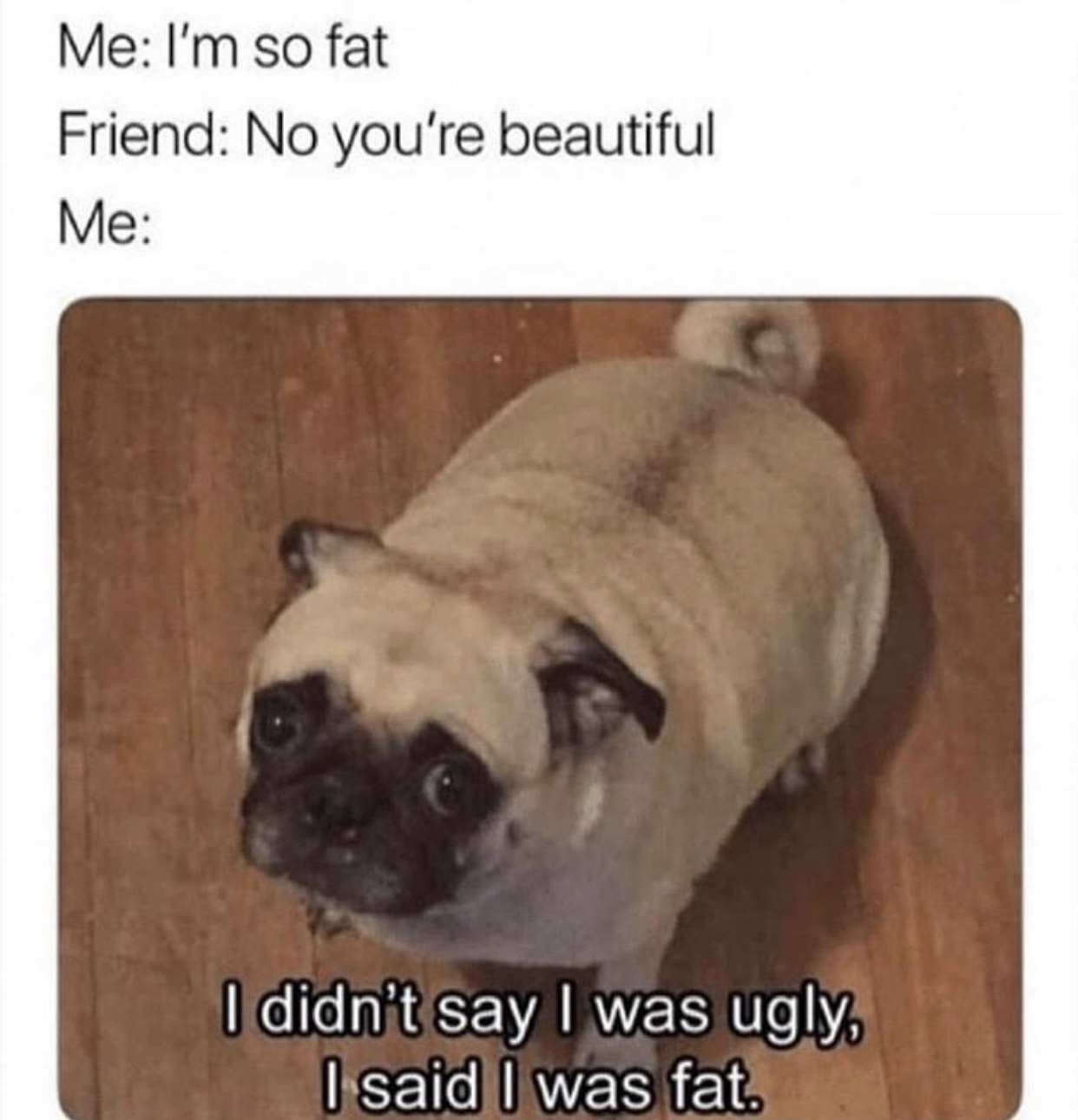 Fat or ugly? - meme