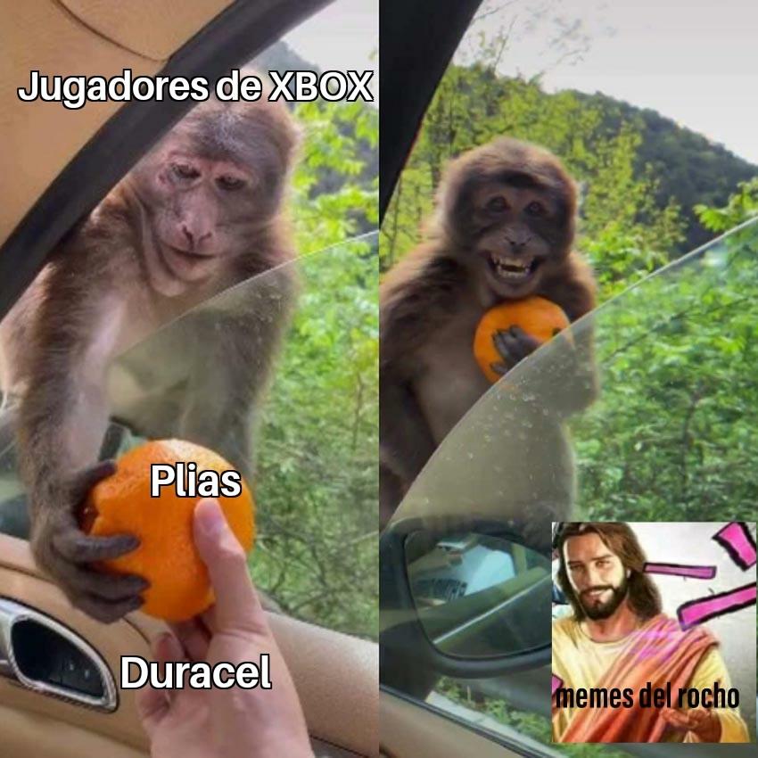 PiLaS - meme