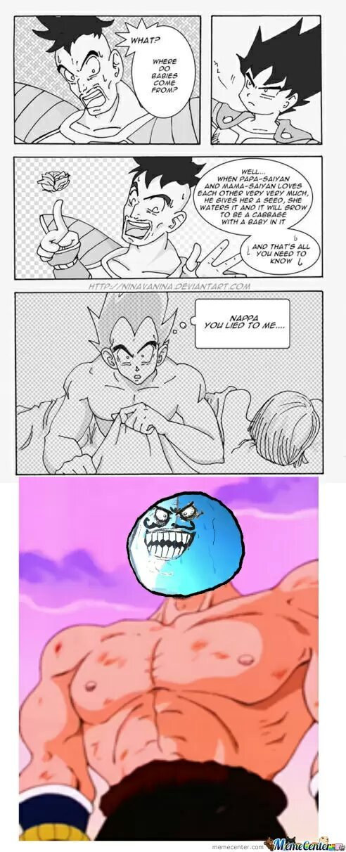 Damn it Nappa! - meme