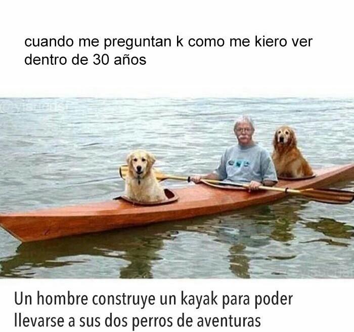K psa - meme