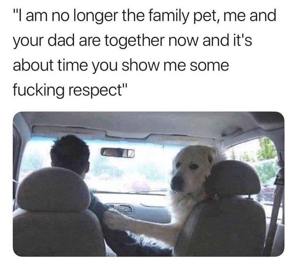 when you go full furry - meme