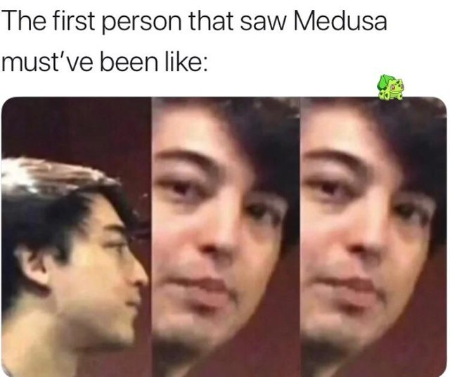The first person that saw Medusa must have been like - meme