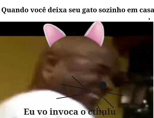 GATOS IRÃO DOMINAR O MUNDO - meme