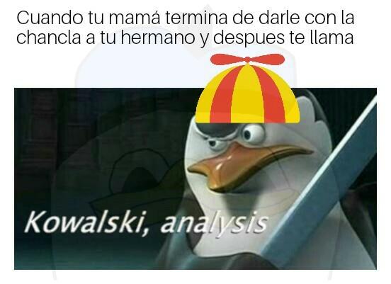 Si analysis no hay kowalski - meme